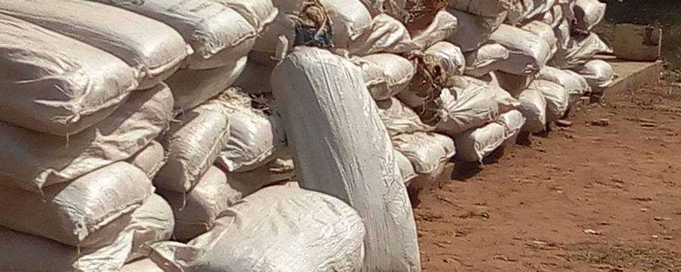 OGF PRESS STATEMENT: Seizure Of 83 Bags Of Indian Hemp By NDLEA In Oyo